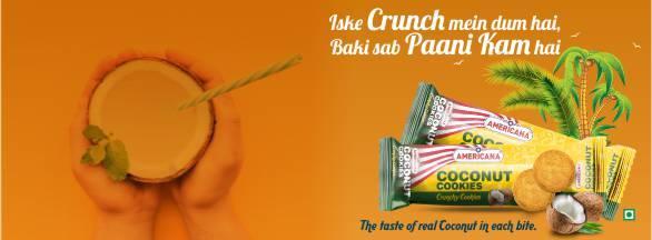 Coconut cookies website banner